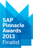 SAP Pinnacle Award 2013