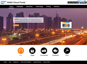 Example of a HANA Cloud Portal page